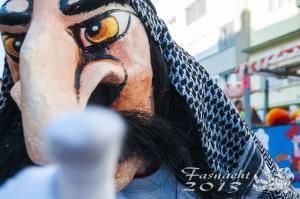 Fasnacht 2013 - 0195